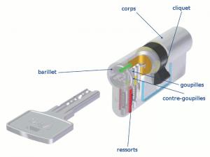 Voici ce qu'il y a à l'intérieur d'un cylindre à profil européen (dans le cas présent, un cylindre Viro Euro-Pro).