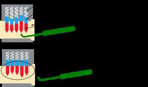 Plus le nombre de goupilles est élevé, plus il est difficile d'aligner correctement toutes les goupilles avec le crochet.